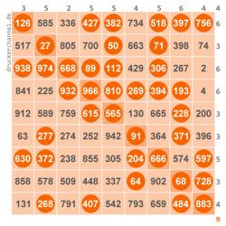 Bingo Schein Kosten